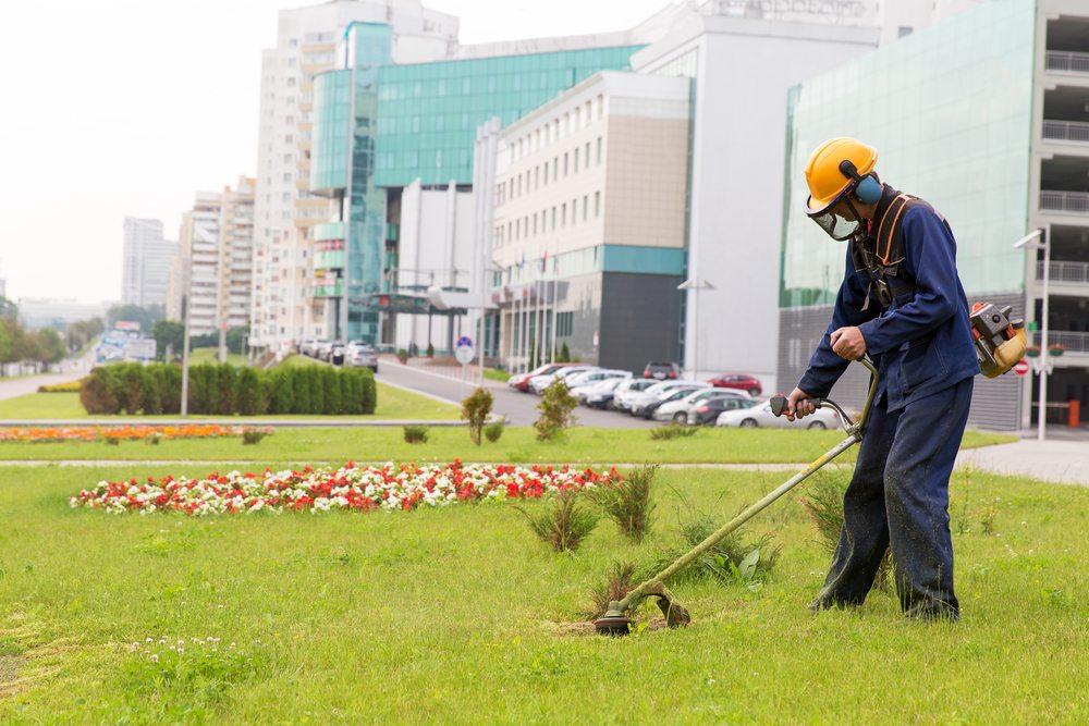 Commercial landscape maintenance business landscape for Commercial landscape maintenance