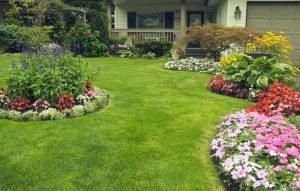 Landscape Maintenance , Lawn Maintenance in Kendall