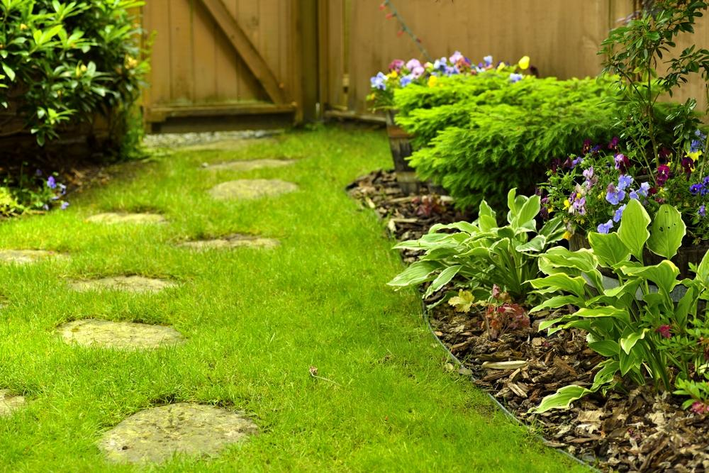 Backyard Maintenance Services | Frank's Lawn Inc