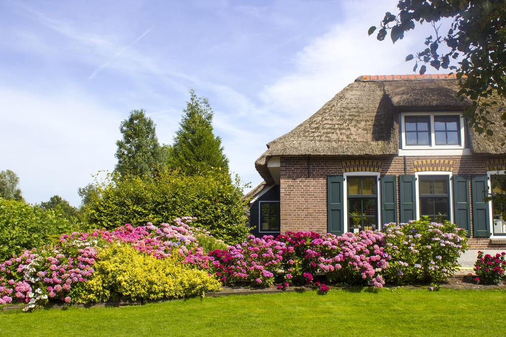 Residential Landscape Services