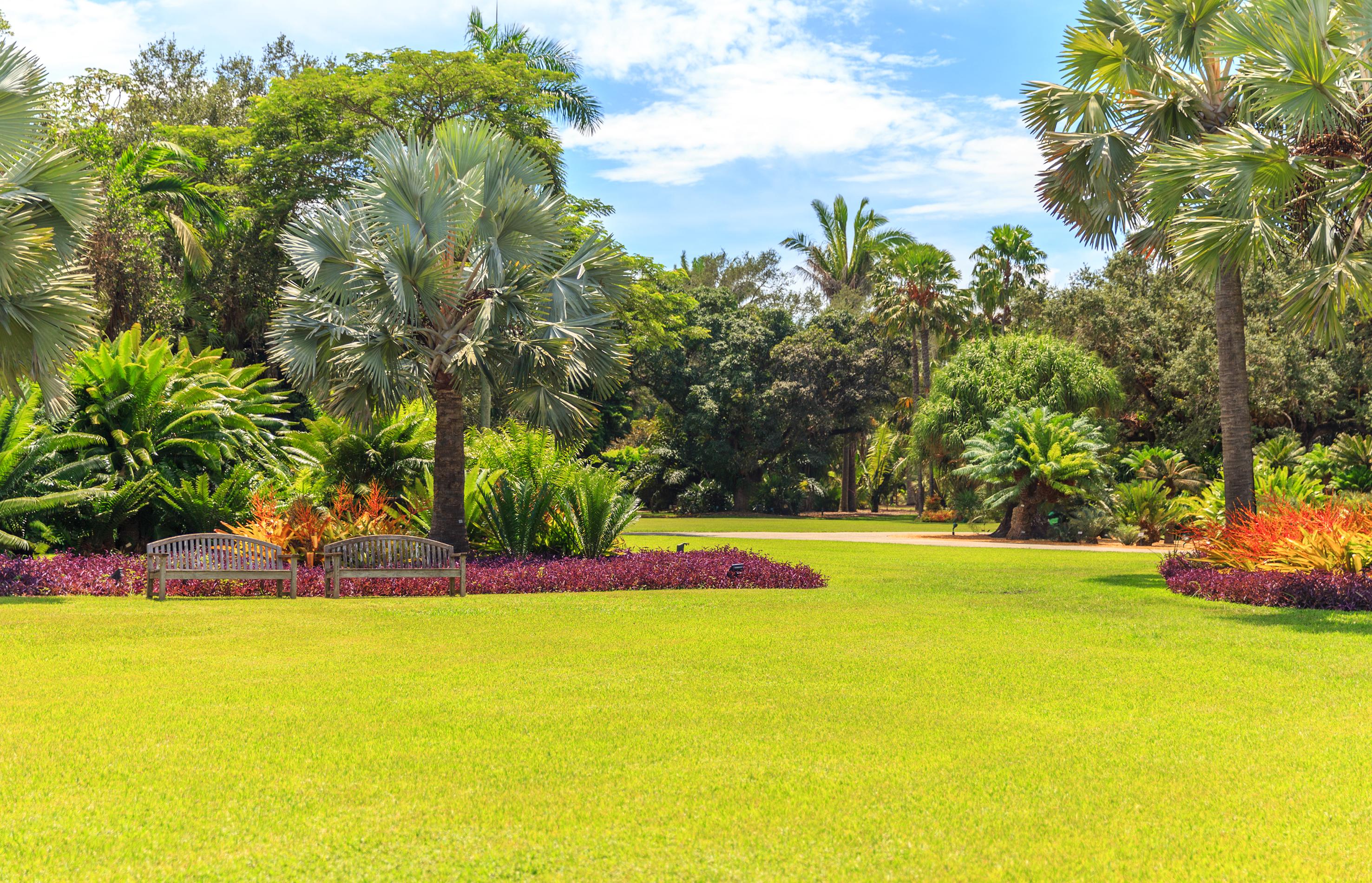 spring plants in Miami