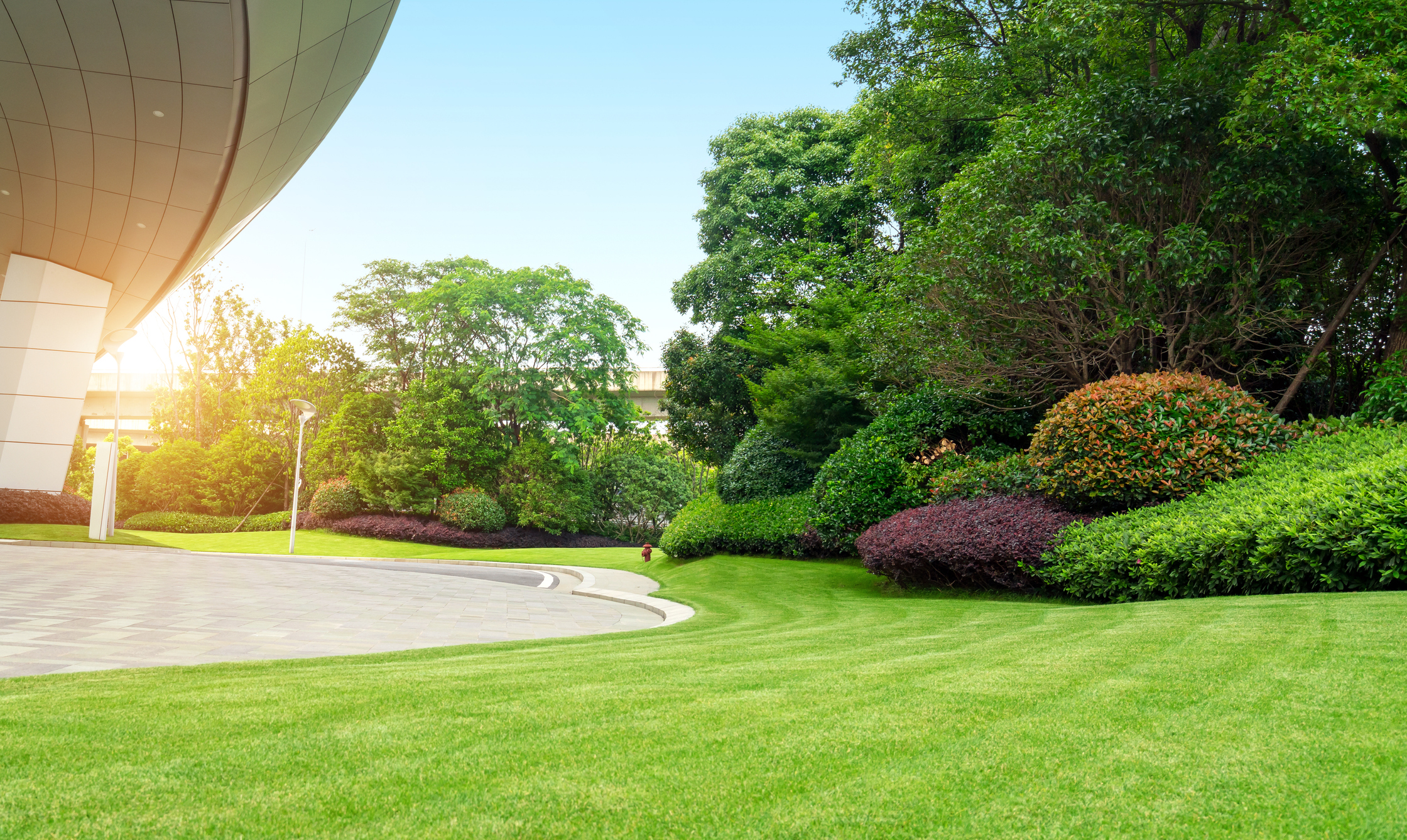 commercial landscaping   frank's lawn & tree service